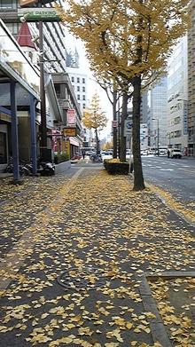 みぃこのカフェタイム♪-DVC00163.jpg